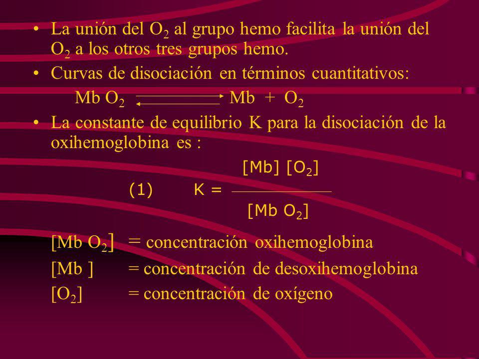 [Mb O2] = concentración oxihemoglobina